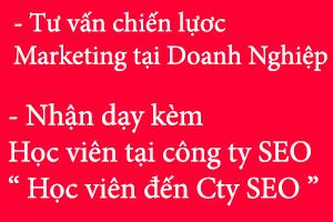 day-seo-tai-doanh-nghiep