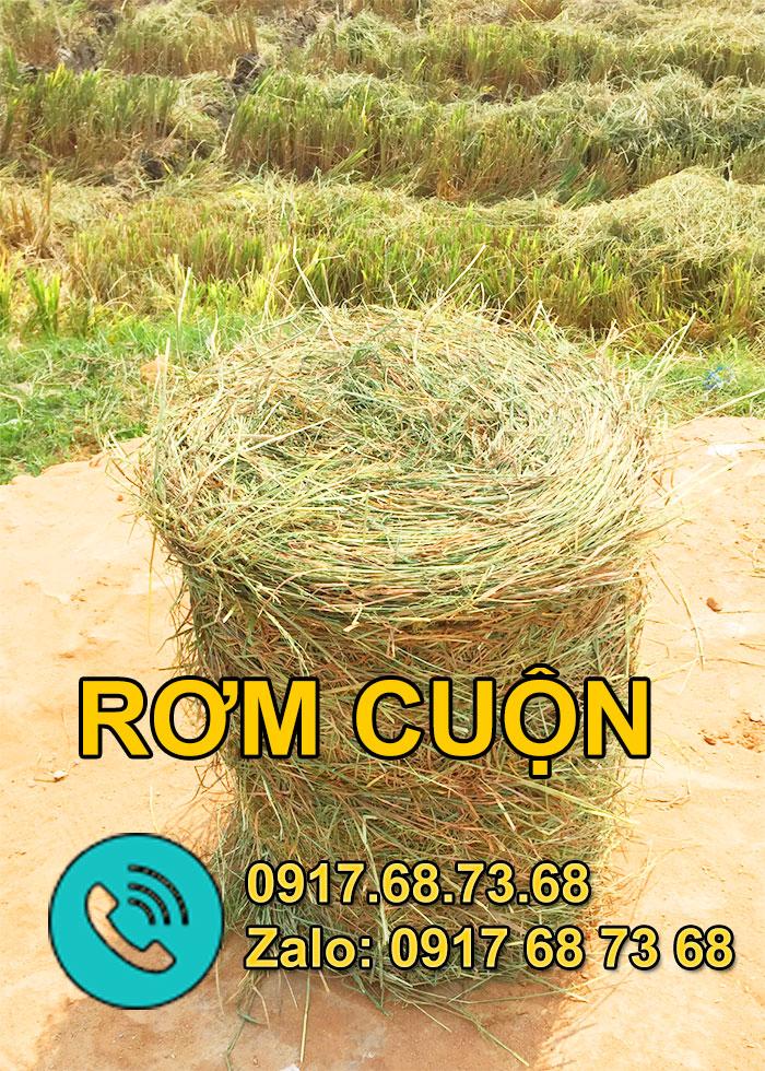 rom-cuon